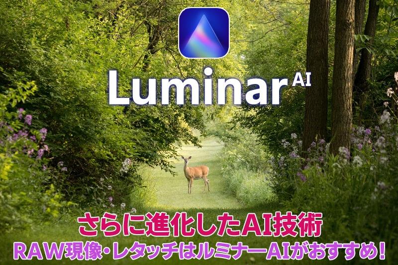 ルミナーAIの画像