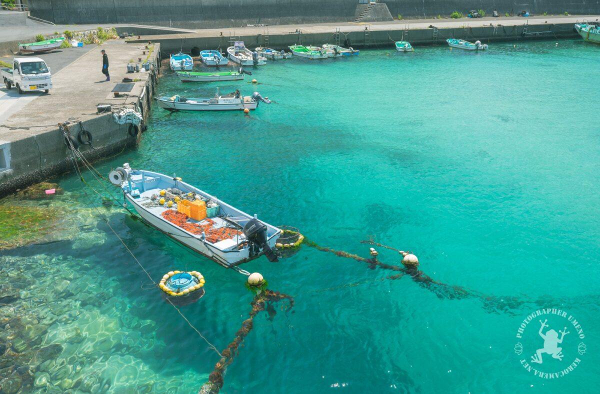 高知県大月町柏島の海を撮影