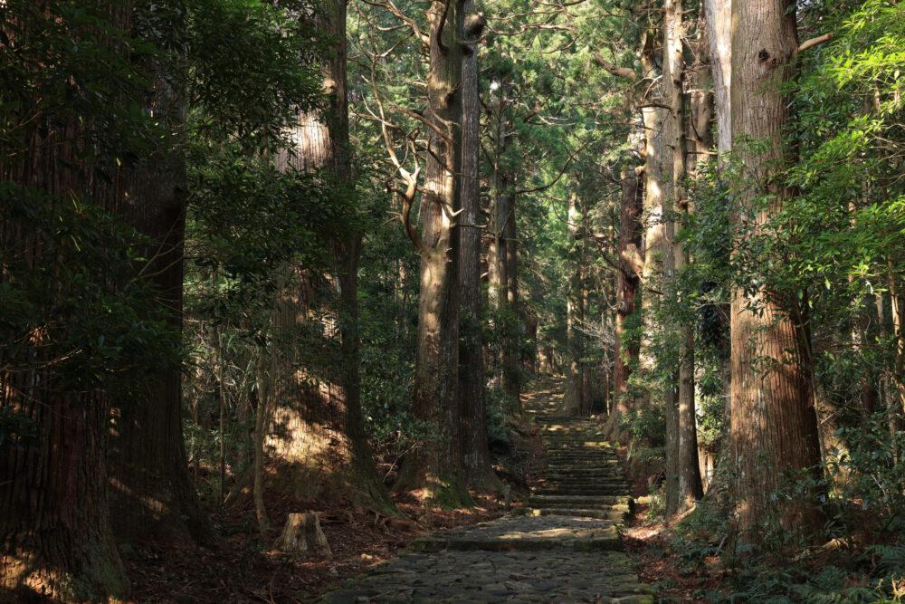 Canon EOS R5で撮影した写真